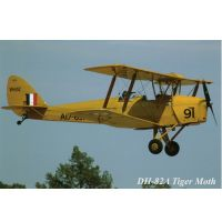 Postcard - Tiger Moth